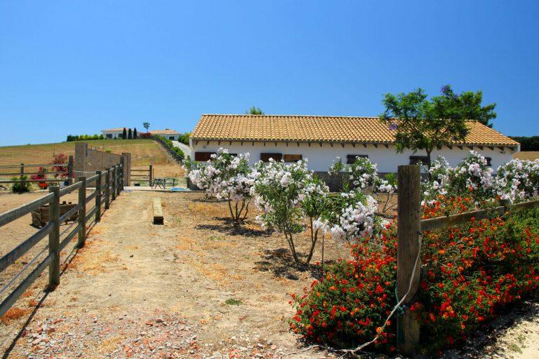 Horse property Vejer de la Frontera