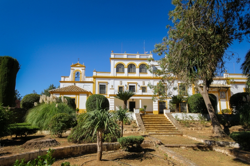 Property in Seville
