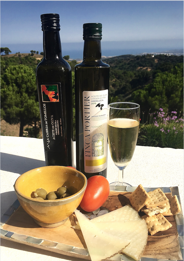 Olive oil from olive grove in Andalusia