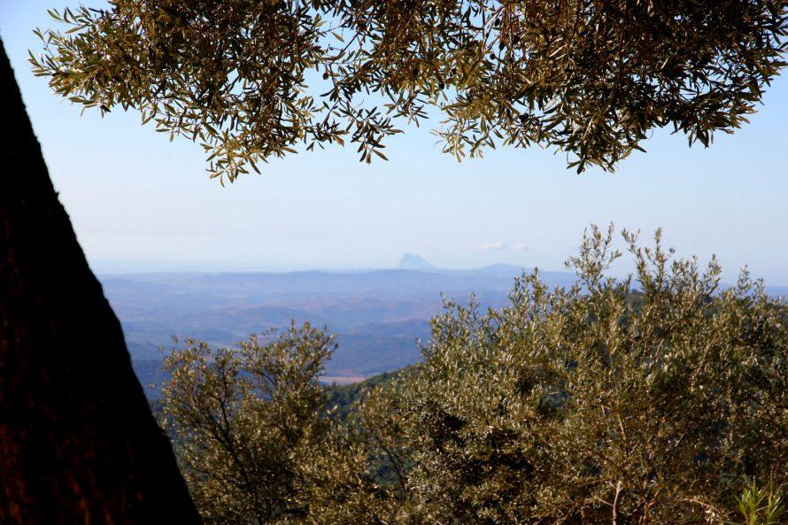 Spectacular views Gaucin