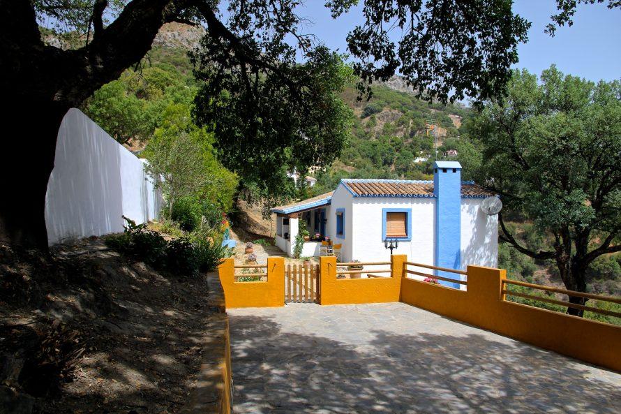 Huis met olijfbomen te koop in Casares