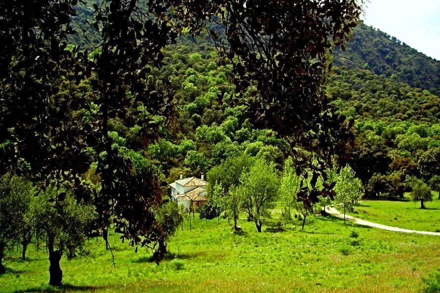 Country property for sale Ronda