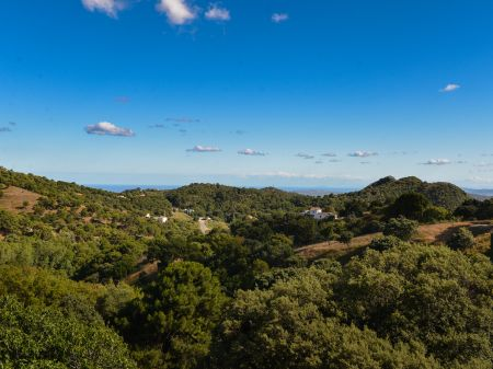 Country property Celima Casares