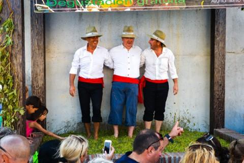 Villas & Fincas informe verano 2015