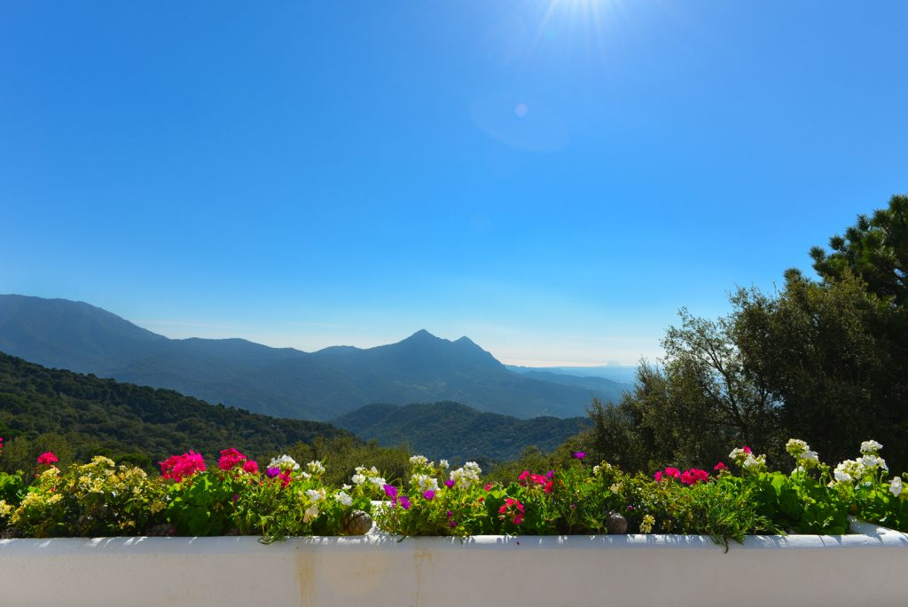 Andalucia vistas