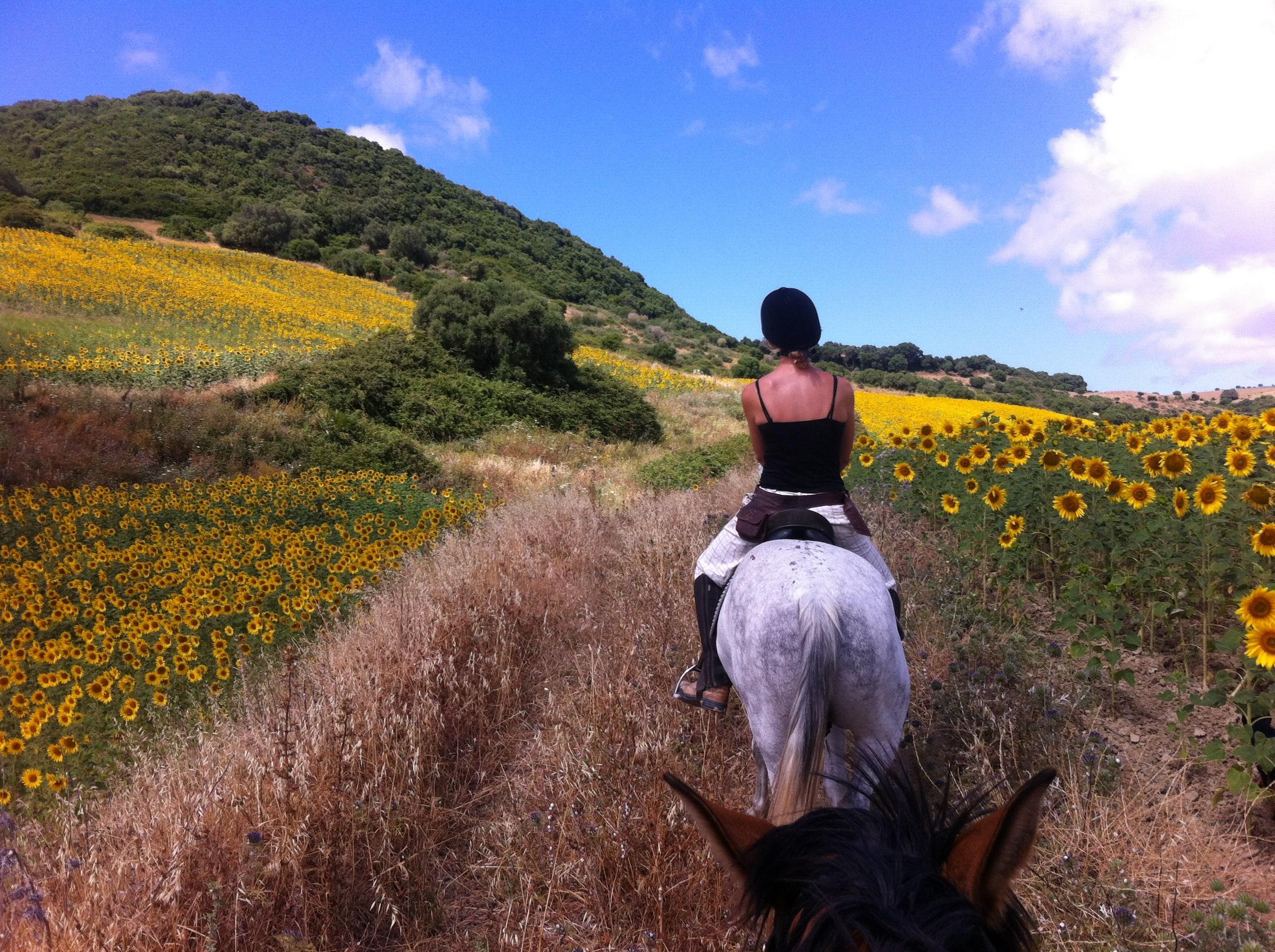 Hacking Out in Andalusia