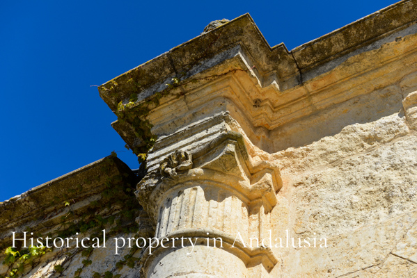Historical Property in Andalusia Blog