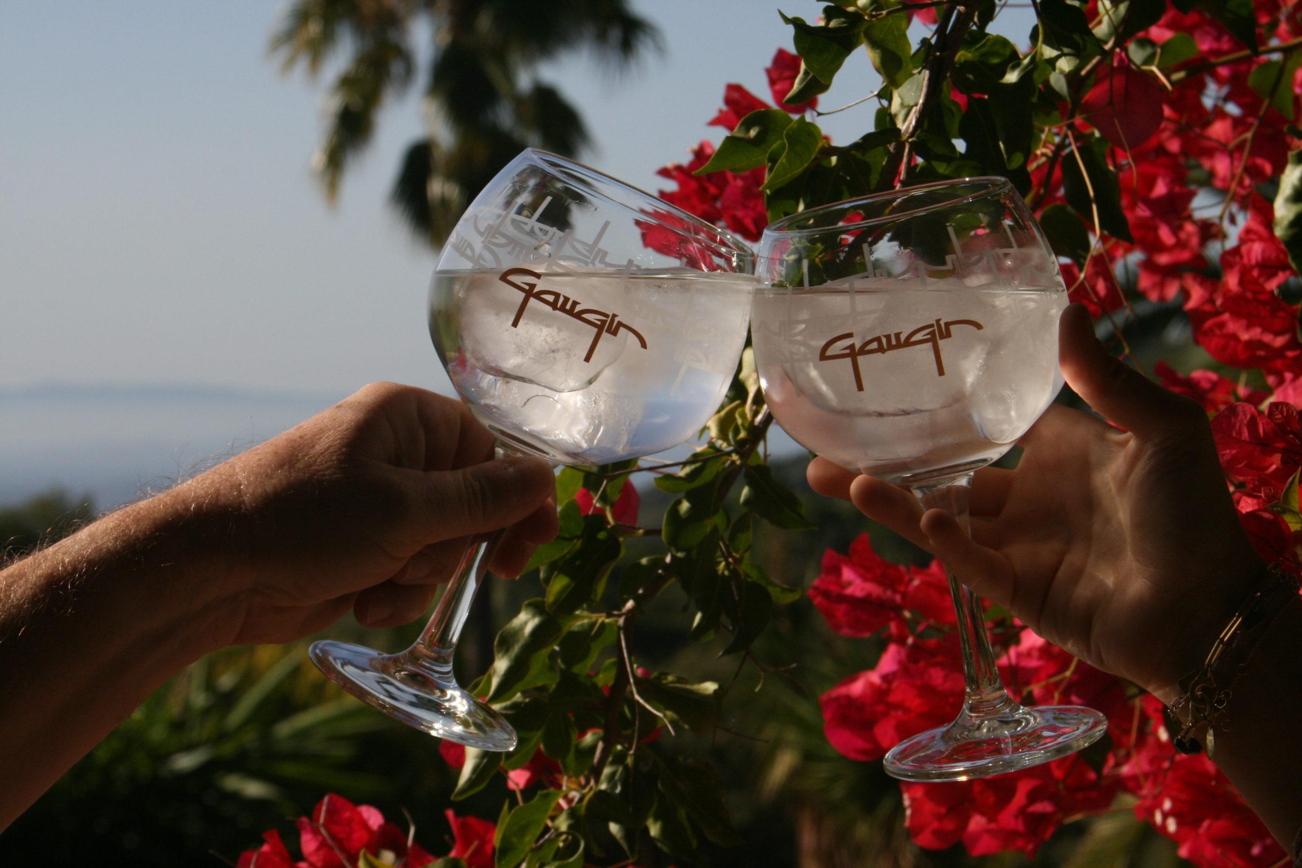 Premium gin Gaugin