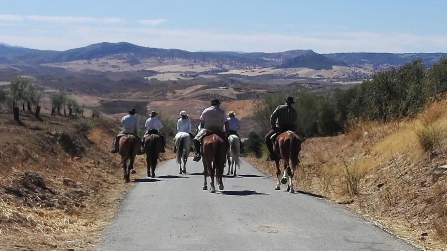 turismo osuna ronda caballo